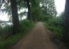 Zvolili jsme krásnou cestu skrz Vrbenské rybníky