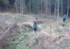 Lez sem lesem