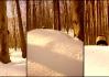 Dokumentaristé přítomní na etapě riskovali holý život, když se vynořil podivný tvor, pravděpodobně sněžný muž Yetti, případně Zaklet(\')ý horolezec a oni se jej jali, odhazujíce životadárné palčáky, aby se stisk spoušti vydařil, fotit..