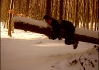 Nezvykle krotký exemplář sněžné Pandy obecné si pochutnává na vyčmuchaném lišejníku. I díky této pandě cestovatelé nakonec zdárně dorazili ke kýženému cíli, když si poopravili azimut dle lišejníku, který by bez pandy jinak nebyli sto nalézt..