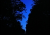 Pouze uzounký proužeček nás vedl černočerným lesem..