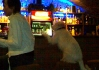Zaznamenáno den před etapou při domluvě v baru..