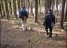 Lesem jdou, lesem jdou.. Chtělo by to nějaký čáprčí na oheň...  (Pro návštěvníky videofestu2003:
