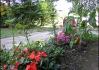 Tak to je okrasný rajčatový záhon u Keřněřů před domem..   To sem neviděl..