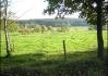 Skotský pastviny okolo Těšínova :D