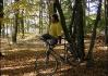 Artista Brůdži Bruggiani při svém vrcholném čísle - lezení po stromě s kolem v ruce (upozorňujeme, že nebylo použito žádné trikové kamery či fotomontáže!..)